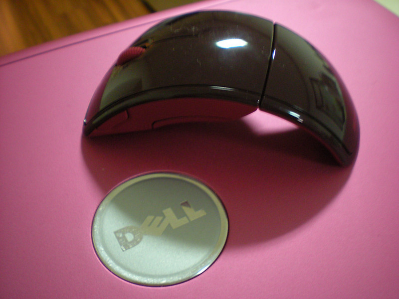 Microsoft Arc Mouse with my PINK DELL Laptop