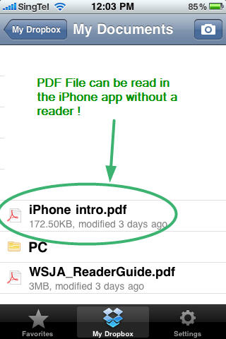 PDF file DropBox in iPhone