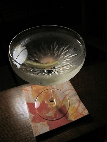 Vesper Cocktail, photo © 2009 Douglas M. Ford. All rights reserved.