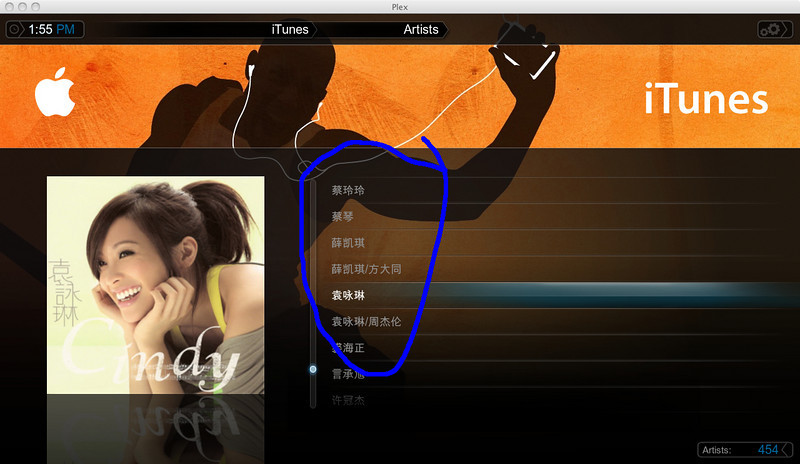 Chinese characters showing as SQUARE in Plex Media Centre