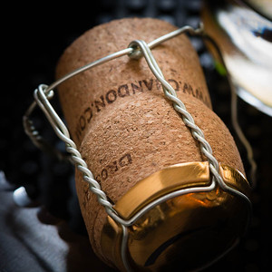 Champagne cork, photo © 2014 Douglas M. Ford. All rights reserved.