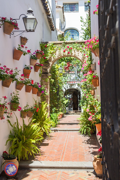 A Street of Flowers in Cordoba (©simon@myeclecticimages.com)