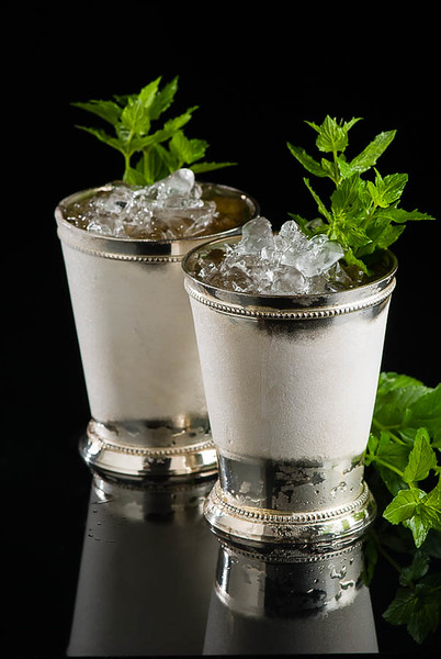The Bourbon Mint Julep, photo © 2014 Douglas M. Ford. All rights reserved.