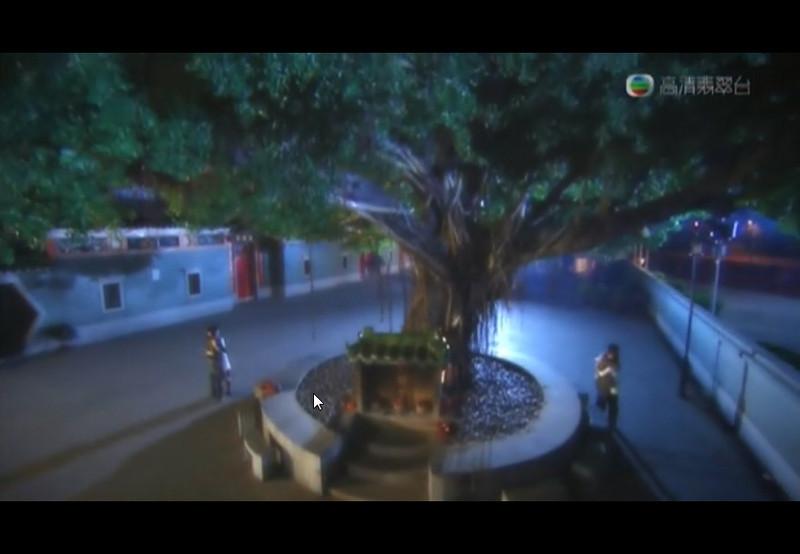 Yuen Lang Big Tree Tin Hau Temple Wishing Tree 元朗大樹下天后古廟