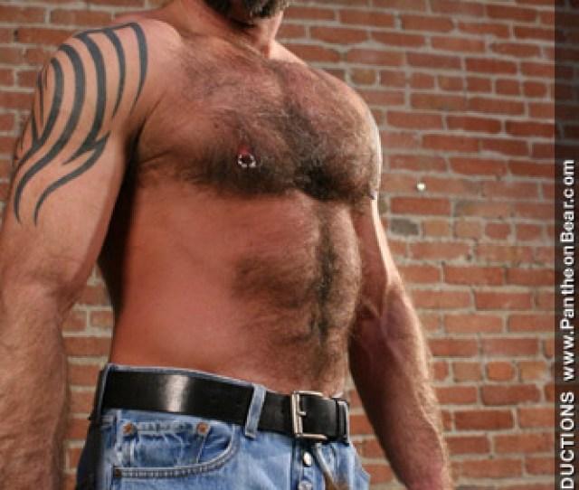 Nate Pierce Tattooed Pierced Furry Bear Gay Porn Performer