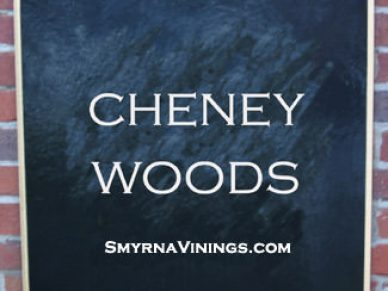 Cheney Woods Smyrna homes for sale