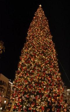 emory adventist christmas tree lighting