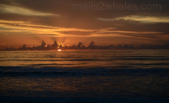 Cocoa beach sunrise photo