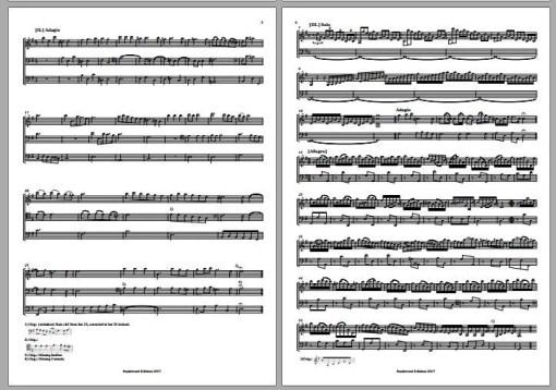 Vivaldi RV 820 score trio sonata