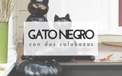 GATO NEGRO CON CALABAZAS