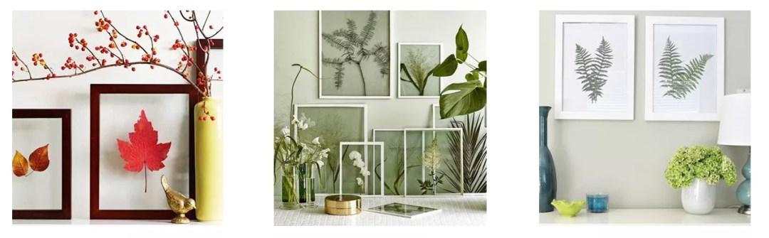 DIY marco con plantas secas