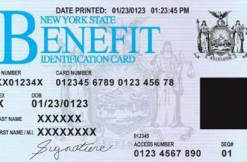 Snap Benefits NY
