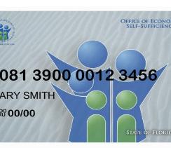 Check Florida Access Card Balance