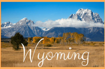 Wyoming EBT Payment Schedule