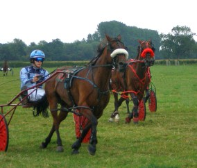 Trotting Races, Kington