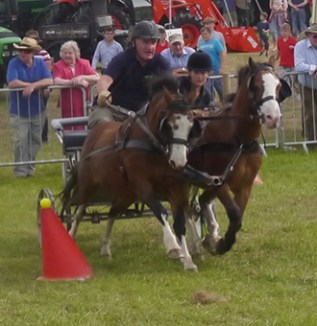 Scurrying, Kington Show