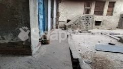 Alley, Alleyway, Animal, Apparel, Archaeology, Architecture, Banister, Bird, Brick, Building, Canine, Cat, City, Clothing, Concrete, Corridor, Crypt, Dog, Flagstone, Floor, Flooring, Handrail, Home Decor, Housing, Human, Indoors, Kitten, Mammal, Nature, Outdoors, Path, Pavement