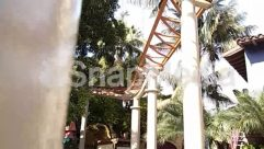 Amusement Park, Blue Sky, Building, Child, Column, Crane, Human, Nature, Palm Tree, Plant, Sun Light, Tree, Wind