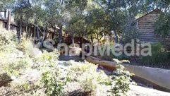 Animal, Backyard, Building, Cabin, Cottage, Countryside, Forest, Furniture, Garden, Grass, Grove, Hacienda, Hotel, House, Housing, Human, Indoors, Jungle, Land