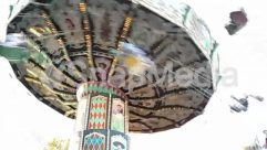 Amusement Park, Animal, Bird, Carnival, Carousel, Crowd, Human, Person, Theme Park