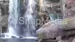 Stream,Scenery,Rock,River,Rainforest,Plant,Landscape,Creek