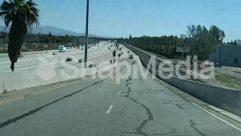 Urban,Transportation,Street,Road,Plant,Asphalt