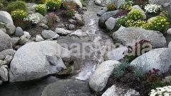 Nature,Creek,stream,knotts