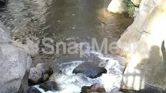 Animal, Creek, Ditch, Ice, Land, Mountain, Nature, Outdoors, Path, Plant, Pollution, Pond, Puddle, Reptile, River, Rock, Slate, Snake, Sport, Sports, Stream, Swimming, Walkway, Water