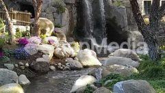 Animal, Beak, Bird, Blossom, Building, Cave, Cliff, Coast, Cottage, Cove, Creek, Flower, House, Housing, Human, Ice, Jungle, Lagoon, Lake, Land, Landscape