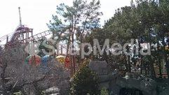 Amusement Park, Animal, Building, Coaster, Construction Crane, House, Housing, Outdoor Play Area, Outdoors, Plant, Play Area, Playground, Roller Coaster, Theme Park, Tree, Vegetation, Villa, Water, Water Park, Zoo