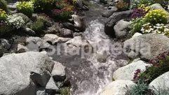 Creek, Forest, Jungle, Land, Nature, Outdoors, Plant, Rainforest, River, Rock, Stream, Tree, Vegetation, Water, Waterfall, Wilderness, Woodland