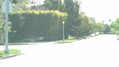 Neighborhood,Lawn,Landscape,Housing,House,Grass,City,Bush