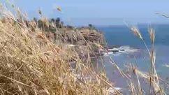 Nature, Water, Outdoors, Ocean, Sea, Shoreline, Promontory, Grass, Plant, Coast, Cliff, Land, Animal, Bird, Rock