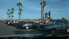 Person, Automobile, Transportation, Vehicle, Car, Parking, Parking Lot, Tree, Plant, Sedan, Palm Tree, beach parking