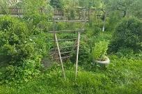 Yard, Plant, Vegetation, Jar, Potted Plant, Pottery, Vase, Planter, Herbs, Garden, Backyard, Chair, Furniture, Herbal, Grass