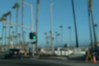 blurry, Palm Tree, Arecaceae, Vehicle, Car, Automobile, Tree, Plant, Road, Intersection, Water, Waterfront, Pier, Port