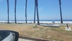 Automobile, Car, Vehicle, Water, Shoreline, Sea, Ocean, Grass, Plant, Path, Tree, Road, Coast, Beach, Building