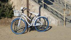 Bicycle, Bike, Vehicle, Wheel, Mountain Bike, Riding Bicycle