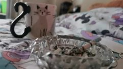 Coffee Cup, Cup, Aluminium, Cat, Pet, Foil, Finger, Pottery, Ashtray, Furniture, Saucer, Smoke, Confectionery, Food, Sweets