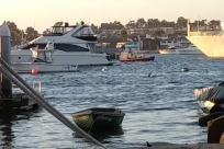 Boat, Vehicle, Yacht, Water, Dock, Harbor, Pier, Port, Waterfront, Bird, Vessel, Watercraft, Rowboat, City, Town
