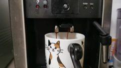 Coffee Cup, Cup, Beverage, Drink, Espresso, Pet, Cat, Latte, Milk, Appliance, Electronics, Hardware, Computer, Mouse, Dessert