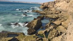 Promontory, Rock, Ocean, Sea, Water, Cliff, Shoreline, Coast, Beach, Landscape, Sea Waves, Wilderness, Cave, Cove, Plant