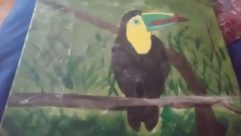 Bird, Toucan, Agelaius, Blackbird, Beak