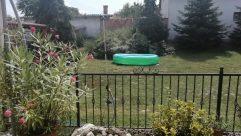 Yard, Plant, Tree, Vegetation, Backyard, Jar, Vase, Potted Plant, Pottery, Water, Rock, Planter, Bush, Fir, Abies