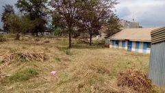 Ground, Building, Shelter, Rural, Countryside, Vegetation, Plant, Housing, Land, Field, Yard, Tree, Grassland, Soil, Forest