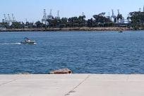 Water, Waterfront, Sea, Ocean, Pier, Dock, Harbor, Port, Vehicle, Building, Shoreline, Aircraft, Airplane, Coast, Town
