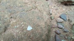 Rock, Ground, Soil, Gravel, Dirt Road, Road, Rubble, Crystal, Invertebrate, Fish, Sea Life, Insect, Limestone, Mineral, Water