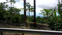 Plant, Tree, Building, Vegetation, Rural, Countryside, Shelter, Water, Housing, Garden, Arbour, Land, Abies, Fir, Home Decor