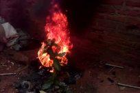 Fire, Bonfire, Flame, Mountain, Forge, Quake, Volcano, Eruption, Flare, Light, Ocean, Sea, Water, Shoreline, Coast