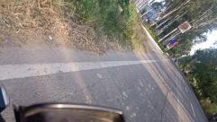 Road, Landslide, Freeway, Vegetation, Plant, Highway, Building, Vehicle, Path, Town, Street, City, Land, Slope, Tree